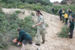 Trent with Torquay College students working to protect the dunes