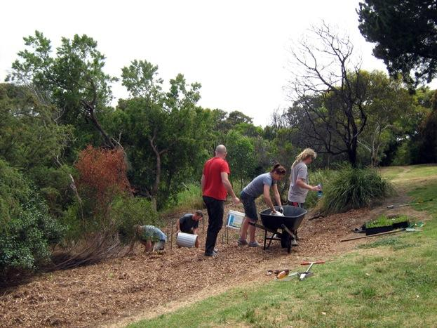 Friends of Jan Juc Creek getting hands on during their recent working bee at Torquay Boulevard. Photo by Margaret Hopkins.