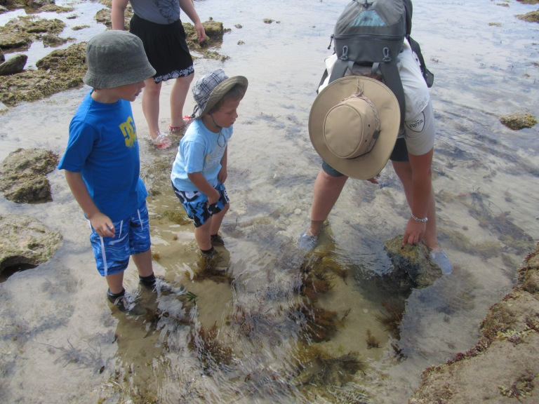 Brody and Kai ??? with Marine Park ranger Alicia Ivory learning about the creatures which live in rockpools.