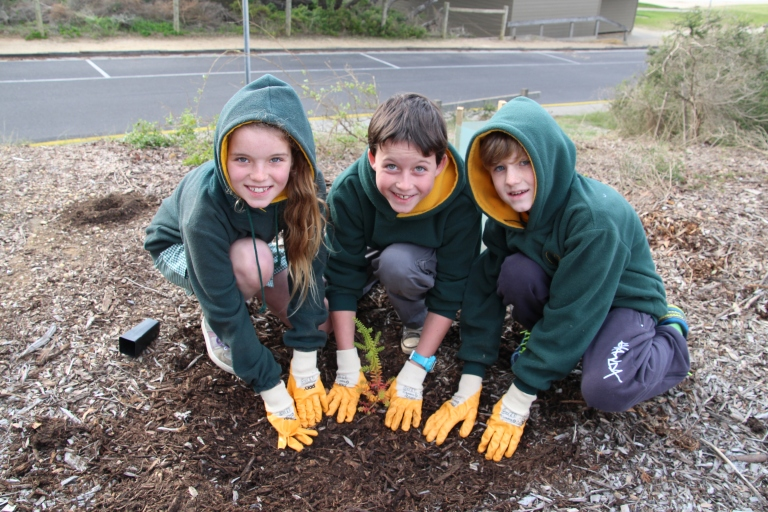 Torquay College students (L-R) Jarrah Hirris-Moore, Joff Newton and Jay Newton enjoying their time on the coast planting a Coastal Moonah Woodland at Cosy Corner.