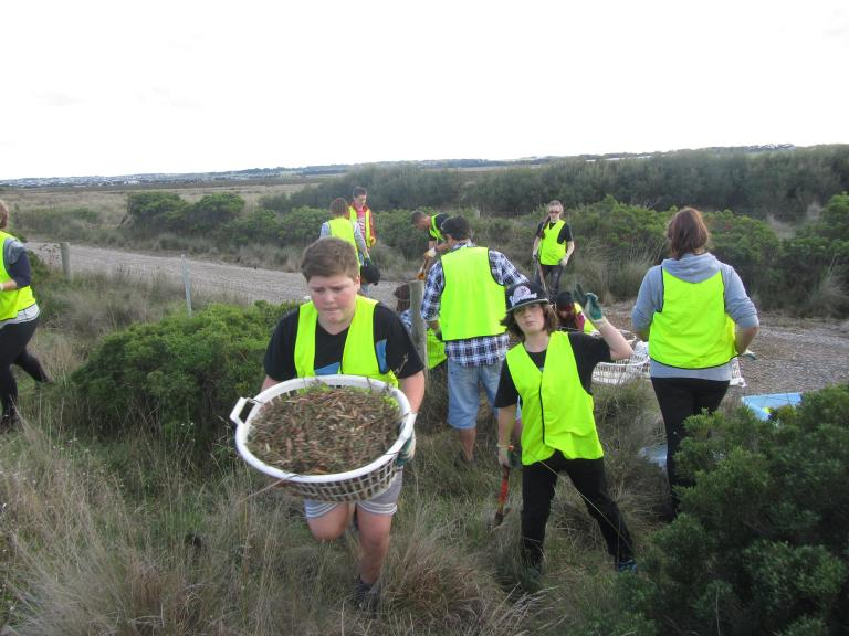 Northern Bay College students aren't afraid to get their hands dirty, laying mulch over soil to provide moisture to indigenous plant species.