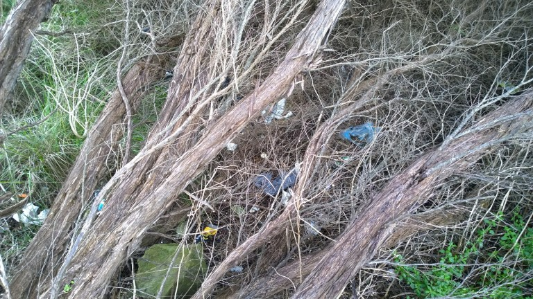 Coalmine Creek (near Moggs Creek) has been in need of a near-by Seal the Loop bin, with litter adding up. Picture: local resident, Rod Hamilton.