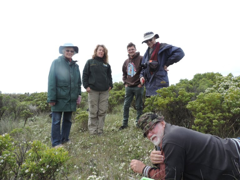 JJCA volunteers Roma Edwards, Tom Elford, and Ian Edwards with Great Ocean Road Coast Committee (GORCC) Conservation Supervisor Georgie Beale (second from left) observe Orchid Conservation Volunteer Neil Anderton as he safely removes a root sample.
