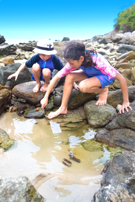Volunteering along the Surf Coast helps protect our local environment for future generations.