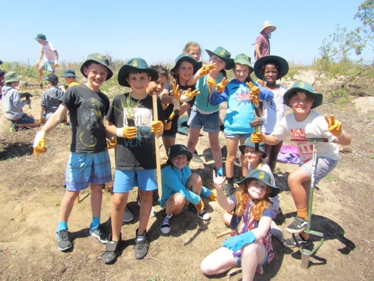 Year 3-4 Students from Torquay College were not afraid to get their hands dirty during the Coastal Stewards Program.
