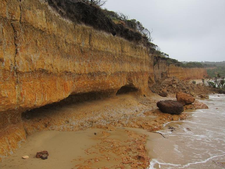 Cliff Erosion IMG_6339