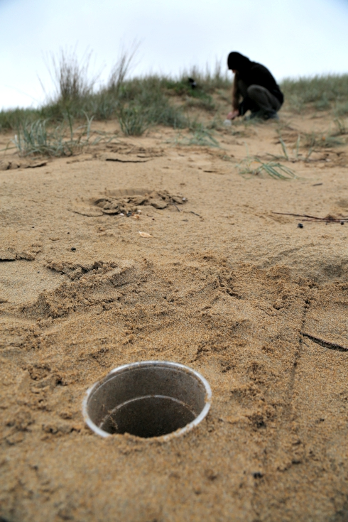 Researchers collecting invertebrate samples using pitfall traps along the Victorian coastline. Photo: Mike Weston