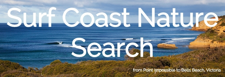 The Surf Coast Nature Search homepage.