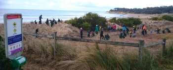 Students exploring the coastal habitat