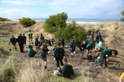 Torquay College students help to revegetate Fissherman's Beach with Indigenous plants.