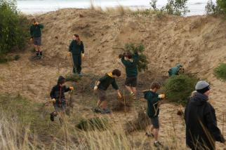 Students in action revegetatinig the beach area.