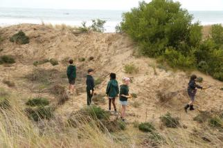 Students in action revegetating the beach area.
