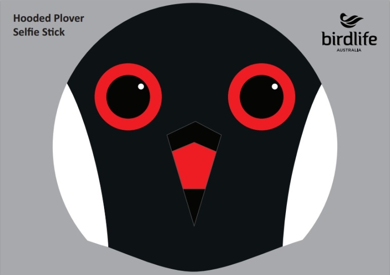 birdlife hoodie mask