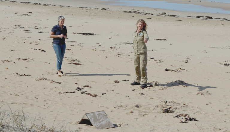 FHPSC Regional Coordinator Sue Guinness and GORCC Conservation Supervisor Georgie Beale observing hoodie nesting sites along the beach.