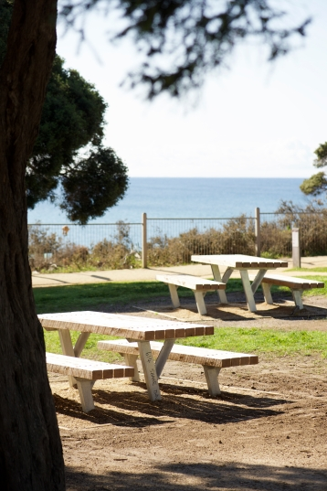 The open grassy areas offer a great place to enjoy a picnic overlooking the Torquay foreshore. Photo: Ferne Millen