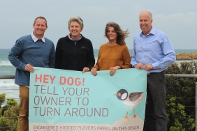 Go Ride A Wave's Nathan Taylor, Friends of the Hooded Plover Surf Coast regional coordinator  Sue Guinness, Ghanda's Melissa Thompson and Great Ocean Road Coast Committee chief executive officer Richard Davies launching this years campaign.