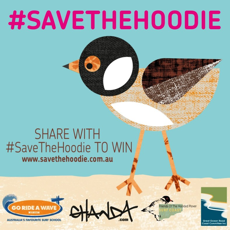 Save the Hoodie official comp image