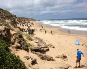 Students conductng beach litter patrol.
