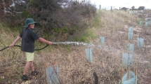 Summer by the Sea participants were able to join the GORCC conservation team and help water newly planted indigenous fauna.