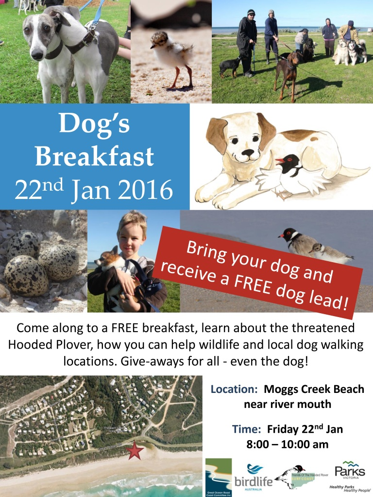 Moggs Creek Dog Breakfast Jan 16.jpg
