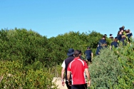 Students and teachers make their way through the coastal habitat to the ocean to examine the dune stability in the area.