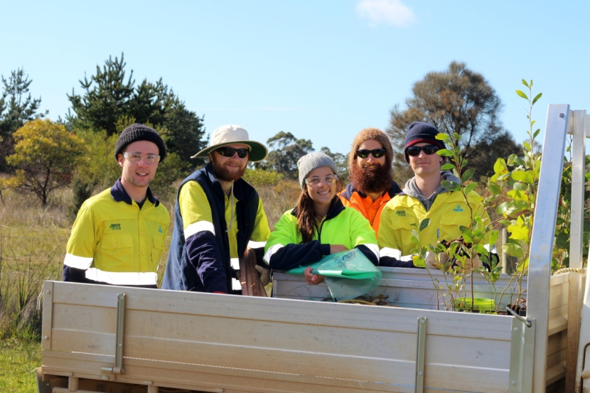 Anglesea roundabout gets a facelift