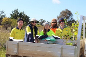 anglesea-roundabout-re-plant-14