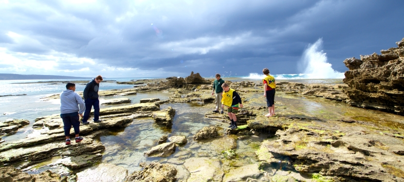 Enjoy Rockpool Rambling the right way!