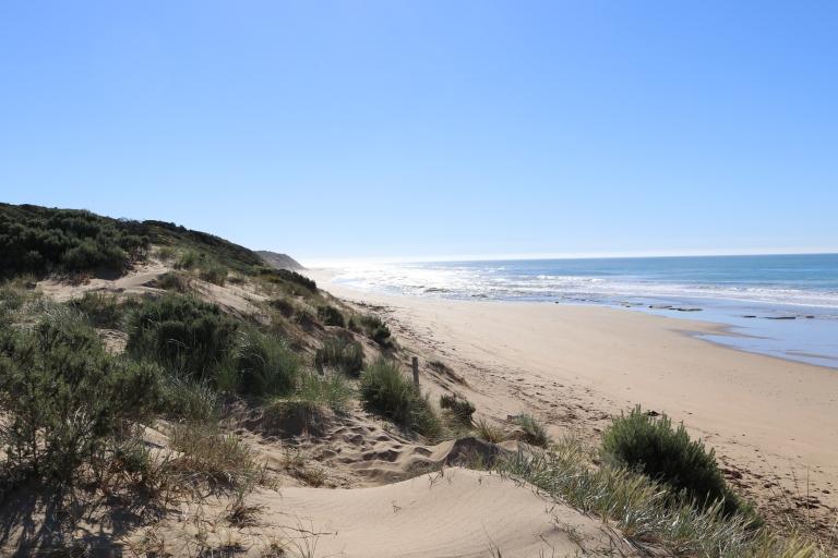 Fairhaven Beach (2).JPG