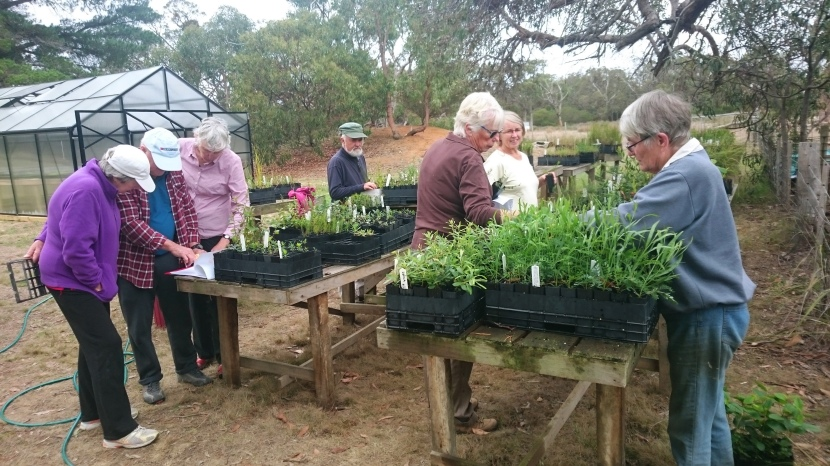 Great Ocean Road Coast invests in community projects