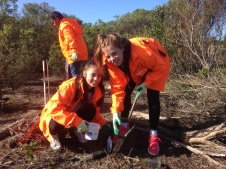 Students from the Coast Guardians program help plant trees.