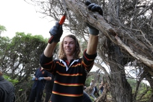 St Joesph College Year 11 students helped to remove the woody weeds at Torquay Back Beach in preparation for the revegetation with indigenous shrubs.