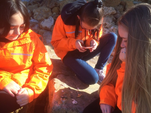 Students collect and analyse shells and other beach items for a deeper understanding of the coast's history.