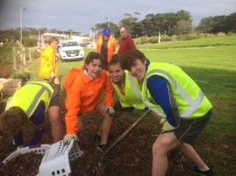Mulching and planting at Fishermans Beach.