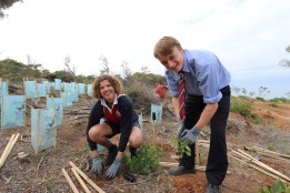 Christian College students help revegetate Soapy Rocks, Anglesea.