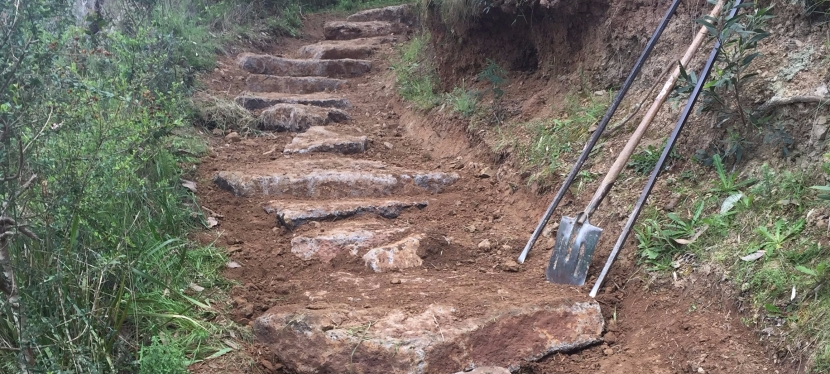 Stair upgrade for Queens Park Reserve