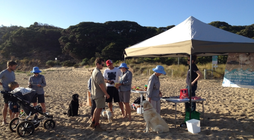 Dogs' breakfasts' success as community takes the pledge to helpHoodies