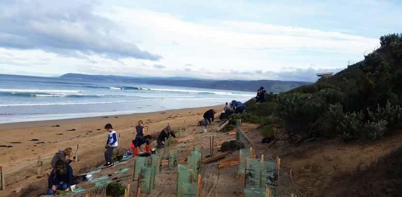 Community and coast to benefit as the Great Ocean Road Coastal Grants open